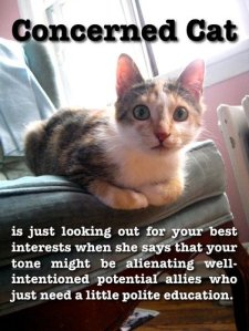 Image description: A shocked-looking cat perches on a chair, staring straight at the camera. Text reads: Concerned cat is just looking out for your best interests when she says that your tone might be alienating well-intentioned potential allies who just need a little polite education.